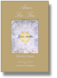 Amor Lin Fin Book cover